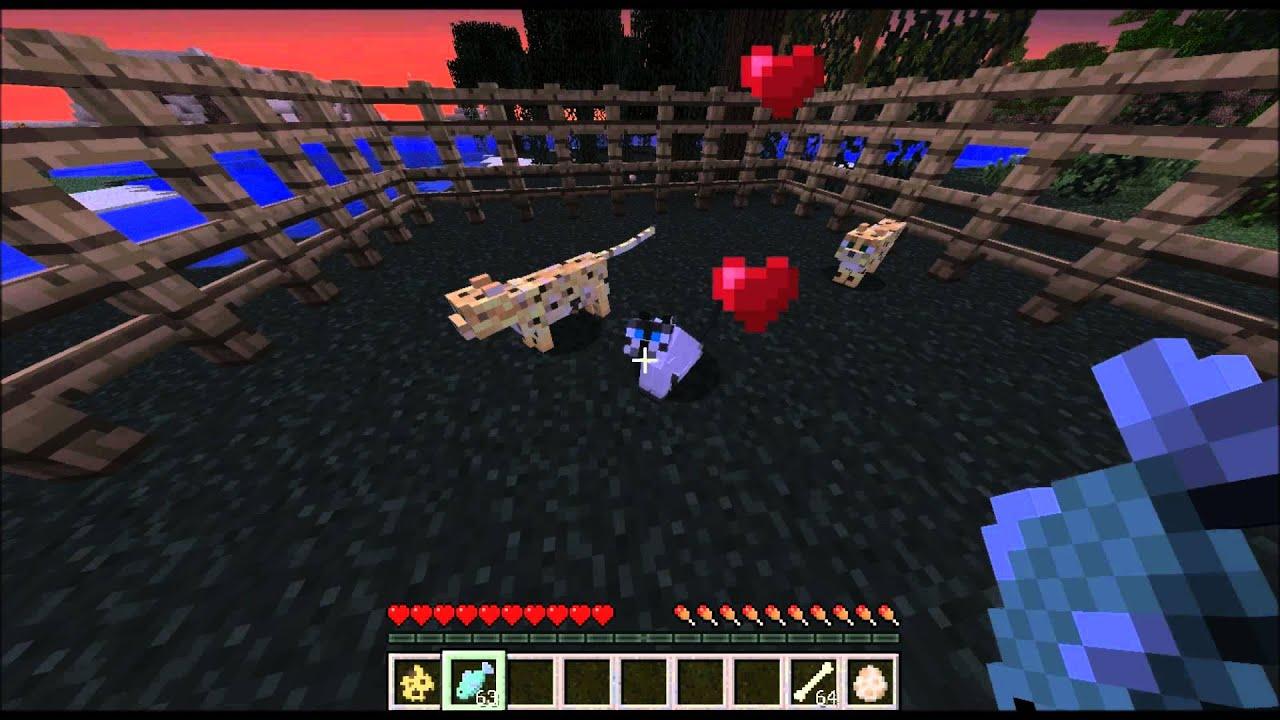 comment dresser les loups minecraft - Minecraft comment