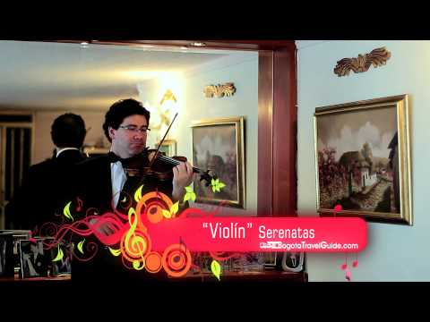 Violin Bogota Travel Guide