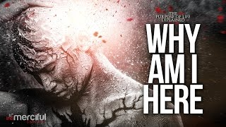 Download Lagu Why Am I Here - The Purpose of Life Gratis STAFABAND