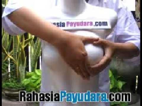 payudara montok tanpa obat! tanpa alat! visit : www.RahasiaPayudara.com