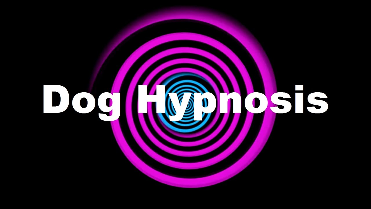 Does erotic hypnosis work