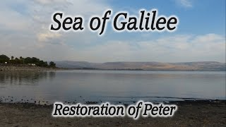 Video: Restoration of Peter - HolyLandSite