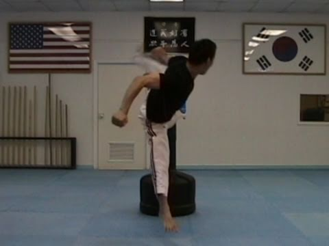 How to learn taekwondo moves names