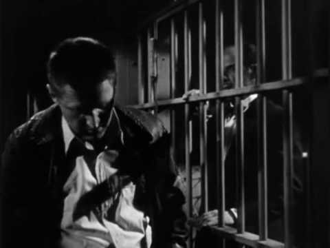 The Asphalt Jungle is listed (or ranked) 19 on the list The Best Film Noir Movies