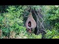 Amazing House Animal Nests Flower Grass | Primitive technology , Building Skill