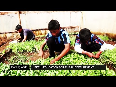 Peru: Rural communities benefit from schools' agri-business plan (Learning World S5E05, Part 1/3)