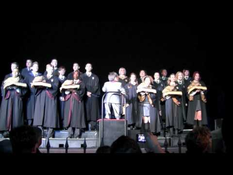 Frog Choir at Harry Potter Park Opening Celebration