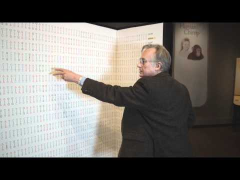 Richard Dawkins : Comparing the Human and Chimpanzee Genomes - Nebraska Vignettes #3