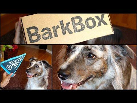 ★BarkBox★ Open Box Ruff-view #2 w/ Guest Star BRISBANE!