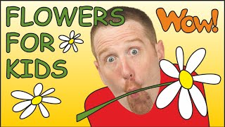 Flowers for Kids | Picture from Steve and Maggie for Children
