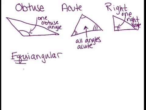 Triangle Classification Principles