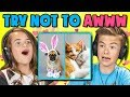 KIDS REACT TO TRY NOT TO AWWW CHALLENGE #2