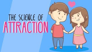 The Science of Attraction (What Makes Someone Attractive?)