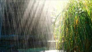 Sonido de la lluvia durante dos hora, con truenos - sound of rain for two hours, without thunder