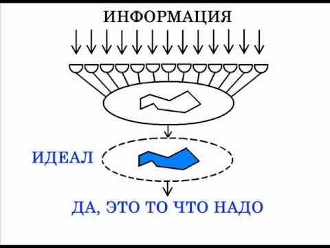 Метафизика Сефирот № 5 Нейронная сеть