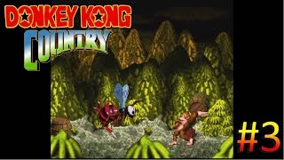 Donkey Kong Country - Queen B Boss Fight