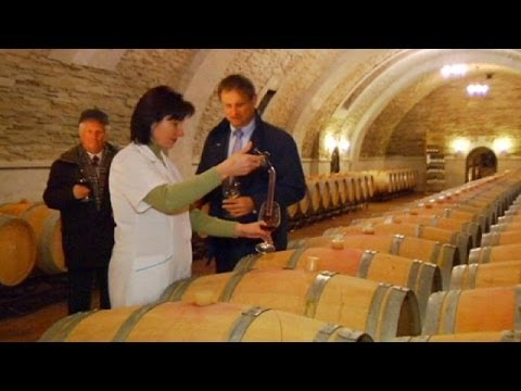 Moldova's winemakers look west after Russian import ban - economy