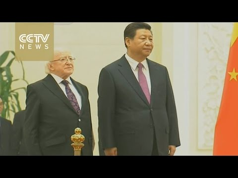 Xi Jinping holds talks with Irish President Michael D. Higgins