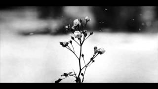 Download Lagu Musik Klasik F Chopin   Spring Waltz Gratis STAFABAND