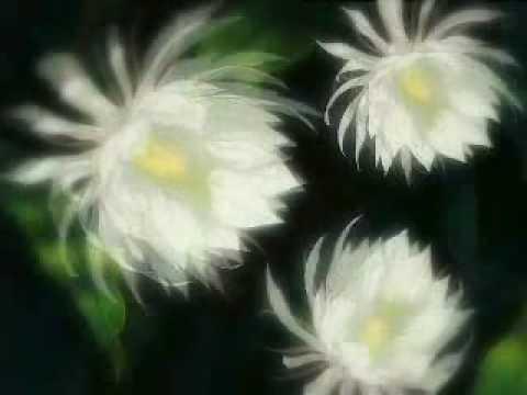 Fleur - Для того, кто умел верить