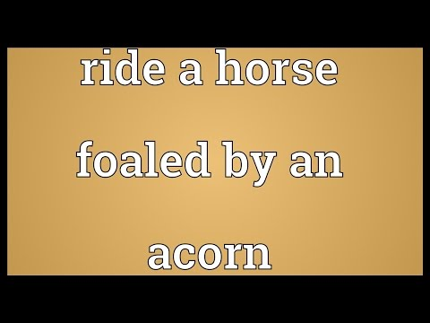 Header of Ride a Horse Foaled by an Acorn