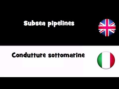 VOCABULARY IN 20 LANGUAGES = Subsea pipelines