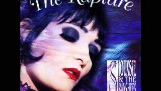 Watch Siouxsie  The Banshees The Double Life video