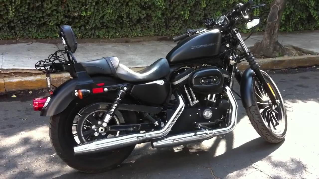 Sissy Seat For Harley Davidson