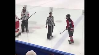 Hockey Players Vs Refs
