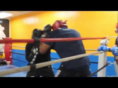 mike tyson son sparring 2014 Image 1