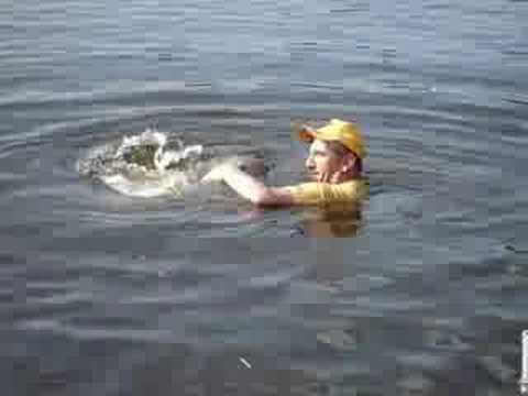 Hoax Man Killer Whale Man Eaten by Killer Whale 2