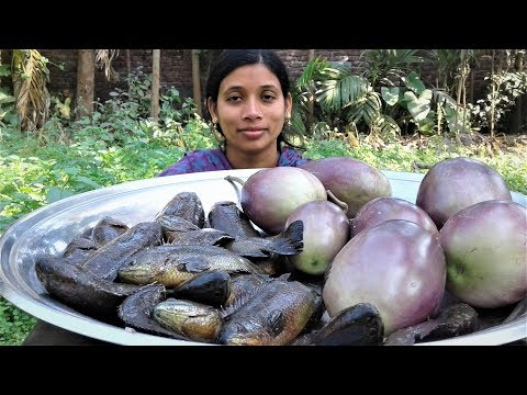 Climbing Perch Fish Curry with Eggplants | Bangali Koi Mach Recipe Cooking By Street Village Food
