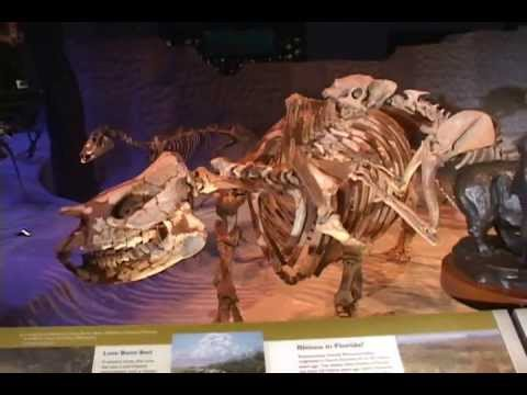 Creating Respect for People and Place - Florida Museum of Natural History