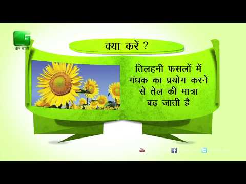 Green Gyan- Kya Karein Kya Na Karein- Fact 4 Green TV