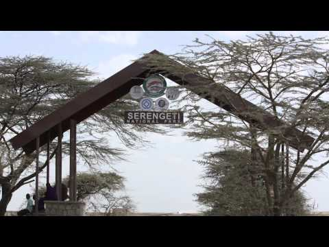 Travel Guide for Tanzania- Mt. Kilimanjaro and Safari Trek