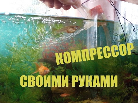 Как сделать для рыбы кислород 853