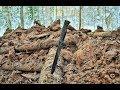 Коп по войне - Война в болотах. Зимний блиндаж (1 часть) / Searching with Metal Detector