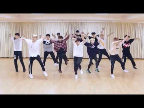 SEVENTEEN 'Don't Wanna Cry' mirrored Dance Practice