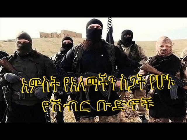 ETHIOPIA -Top 5 Most Dangerous Terrorist Organization In The World