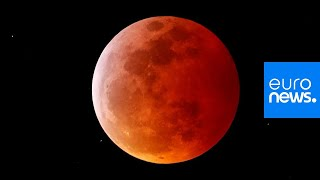 'Super blood wolf moon': the best images as total lunar eclipse wows skygazers