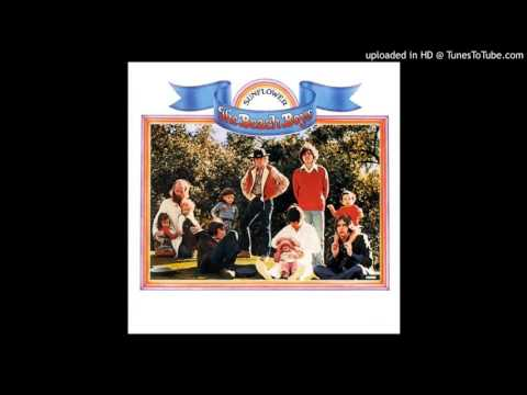 Beach Boys - This Whole World