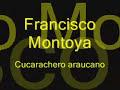 Francisco Montoya Cucarachero Araucano