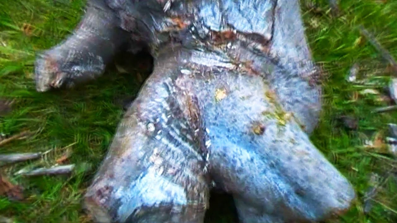 DEMONIC LOG ASS