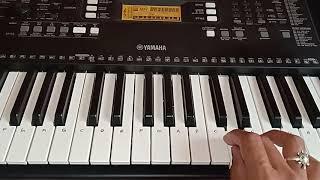 Tum Dil Ki Dhadkan Mein song on piano ( learn & play )