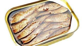 Как делают шпроты. Из какой рыбы делают шпроты