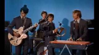 Watch Monkees She video