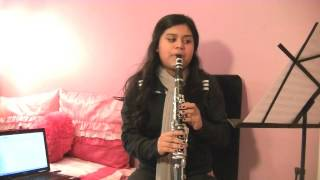 What Makes You Beautiful-One Direction (Clarinet Cover)