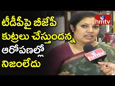 Daggubati Purandeswari Face to Face Over Chandrababu Comments on BJP | Telugu News | hmtv