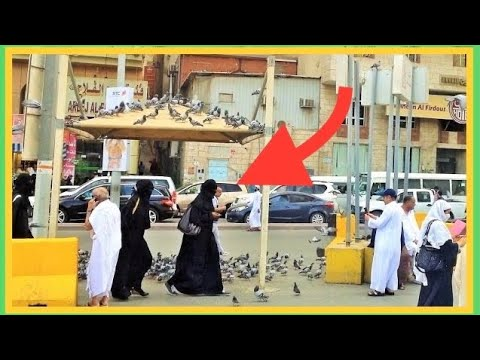 Makkah Madinah Street Life Scenes & People Saudi Arabia Travel Video Guide