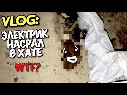 VLOG: Электрик НАСРАЛ В ХАТЕ/ Андрей Мартыненко